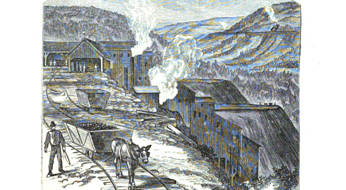 Williams Valley 1878