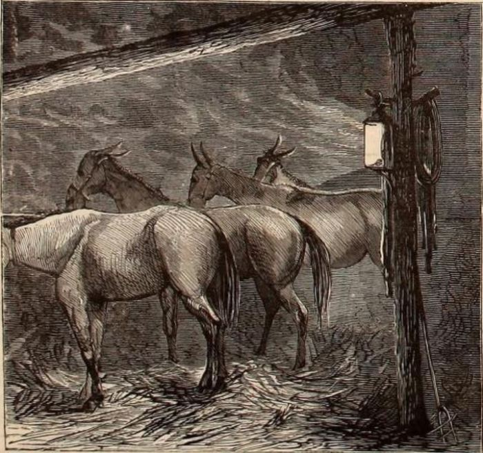 Stable in the Mines