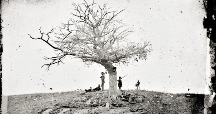 Antietam Graves